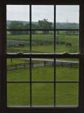 View of a Horse Farm from Inside a Window