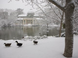 Crystal Palace in the Snow, Retiro Park, Madrid, Spain, Europe