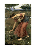 Narcissus, 1912 Art Print