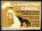 36th Exposition Canine de Briard