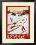 Winter Sport in Der Schweiz Framed Art Print