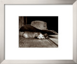 Sieste Framed Art Print
