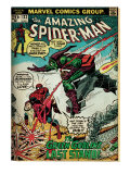 Marvel Comics Retro: The Amazing Spider-Man Comic Book Cover #122, the Green Goblin (aged)