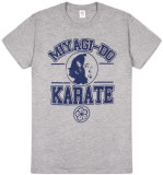 The Karate Kid - Miyagi-do Karate