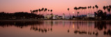 Reflection of Trees in Water, Santa Barbara, California, USA