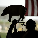Man Holds a Pig, Representing Goverment Spending, as He Attends a Tea Party Tax Rally