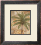Tropical Spirit II Framed Art Print