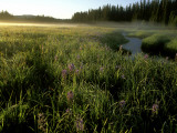 Buy Early Morning Fog on Packer Meadows, Montana, USA at AllPosters.com