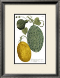 Antique Melons II