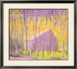 Saltbox Barn, 2002 Framed Art Print