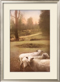 Ruthie's Sheep Framed Art Print