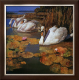 The Swans Family II