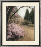 Azalea Way Framed Art Print