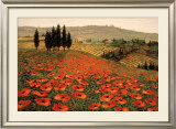 Hills of Tuscany I Framed Art Print
