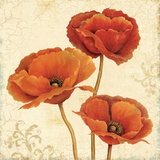 Poppy Boquet II