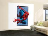 Spider-Man (Comics  BD)