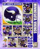 2010 Minnesota Vikings Team Composite