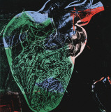 Human Heart, c.1979 (green) Art Print