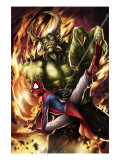 Spider-Man India #4 Cover: Spider-Man and Green Goblin