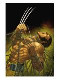 Uncanny X-Men No.499 Cover: Wolverine