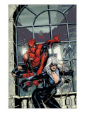 Marvel Knights Spider-Man #4 Cover: Spider-Man and Black Cat