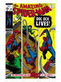Amazing Spider-Man No.89 Cover: Spider-Man and Doctor Octopus