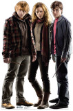 Harry Potter and the Deathly Hallows - Group - Harry, Hermoine and Ron Stand Up