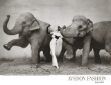 Dovima with Elephants, c.1955