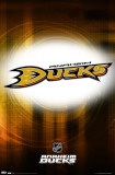 Ducks Logo 2010