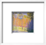 Clearing Capriccio, c.2001 Framed Art Print