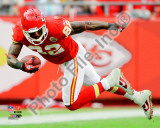 Dwayne Bowe 2010 Action