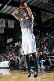 Austin Toros v Texas Legends: Joe Alexander