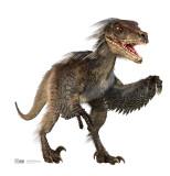 Velociraptor Cardboard Cutouts