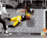 Troy Polamalu 2010 Spotlight Action