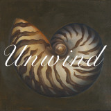 Unwind Seashell