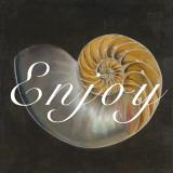 Enjoy Seashell
