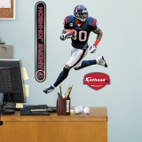 Andre Johnson Fathead Junior