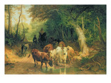 Cattle Watering in a Wooded Landscape