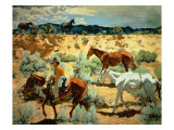 The Southwest Giclee Print