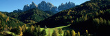 Buy Trees on a Landscape, Dolomites, Funes Valley, le Odle, Santa Maddalena, Tyrol, Italy at AllPosters.com