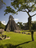 The Great Plaza at Tikal Archeological Site.