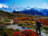 Trekkers Walking Through Autumnal Foliage Towards Monte Fitz Roy
