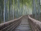 Buy Stairway Through Bamboo Grove Above Adashino Nembutsu-Ji Temple at AllPosters.com