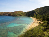 Coral Reef and Beach at Hanauma Bay