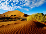 Sand Dunes in Namib Desert Park