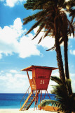 Buy Tropical-Orange Lifeguard Hut at AllPosters.com