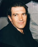 Buy Antonio Banderas from Allposters