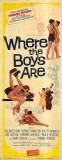 Ces folles filles d'Eve|Where the Boys Are