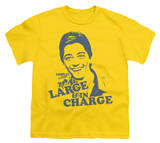 Youth: Charles in Charge-Large&In Charge