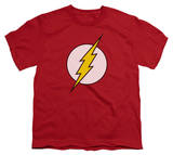 Youth: DC-Flash Logo